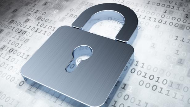 Bildnummer: 54475711  Security concept: Silver C…