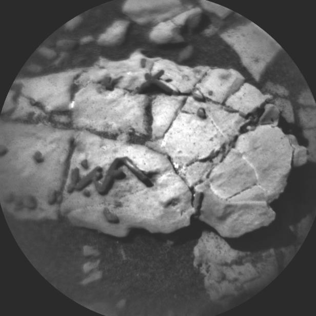 Curiosity-rover-fossils-1400x1400.jpg