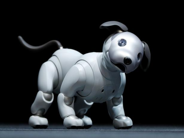 """Sony Corp's entertainment robot """"aibo"""" is pictured at a news conference in Tokyo"""