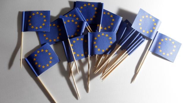 THEMENBILD: EU / EU-WAHL