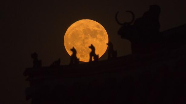 Mond rückseite