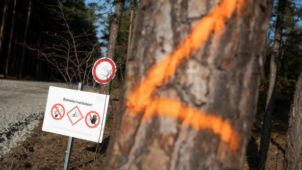 Unexploded ordnance warning signs are seen in the area where the U.S. electric vehicle pioneer Tesla will build its first European factory and design center in Gruenheide near Berlin