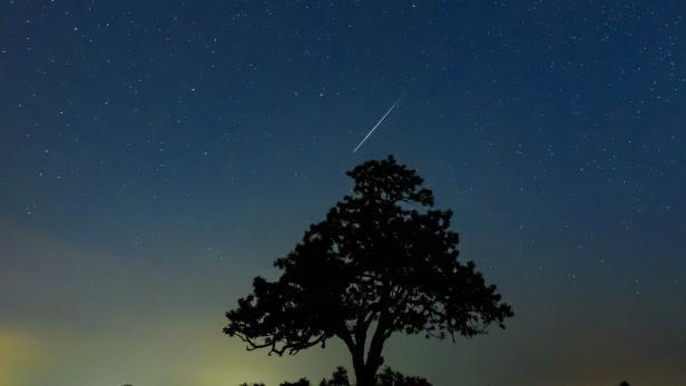 Swarm of meteorites Perseida in Hungary
