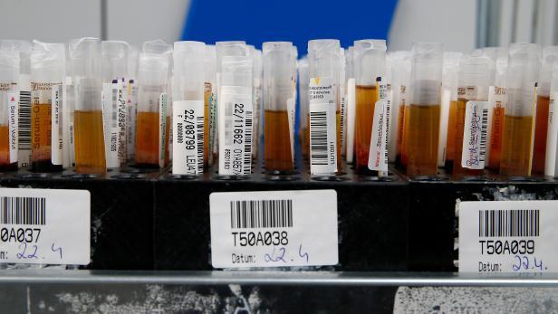 Corona diagnostics laboratory in Ingelheim
