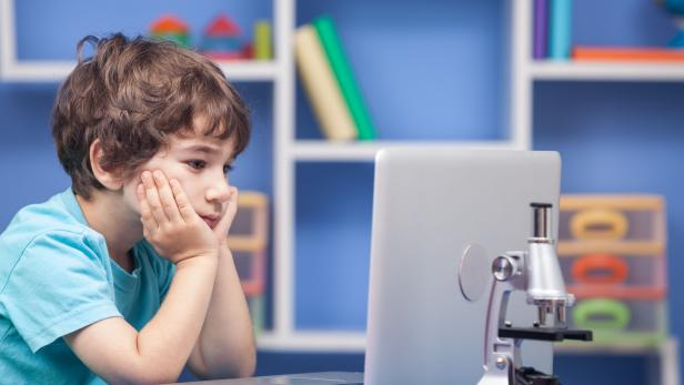 Little Boy Using Notebook Computer In His Room