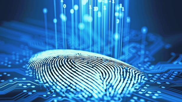 Fingerprint Binary Microchip