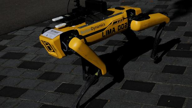 A four-legged robot dog called SPOT patrols a park as it undergoes testing to be deployed as a safe distancing ambassador following the coronavirus disease (COVID-19) outbreak in Singapore