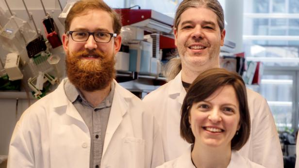 3 WissenschaftlerInnen der St. Anna Kinderkrebsforschung