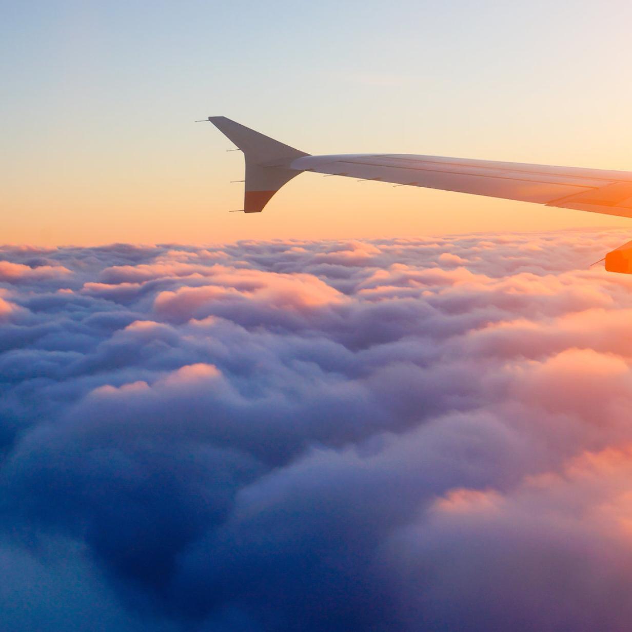 Die besten Reisevergleichsportale abseits von Booking und Trivago