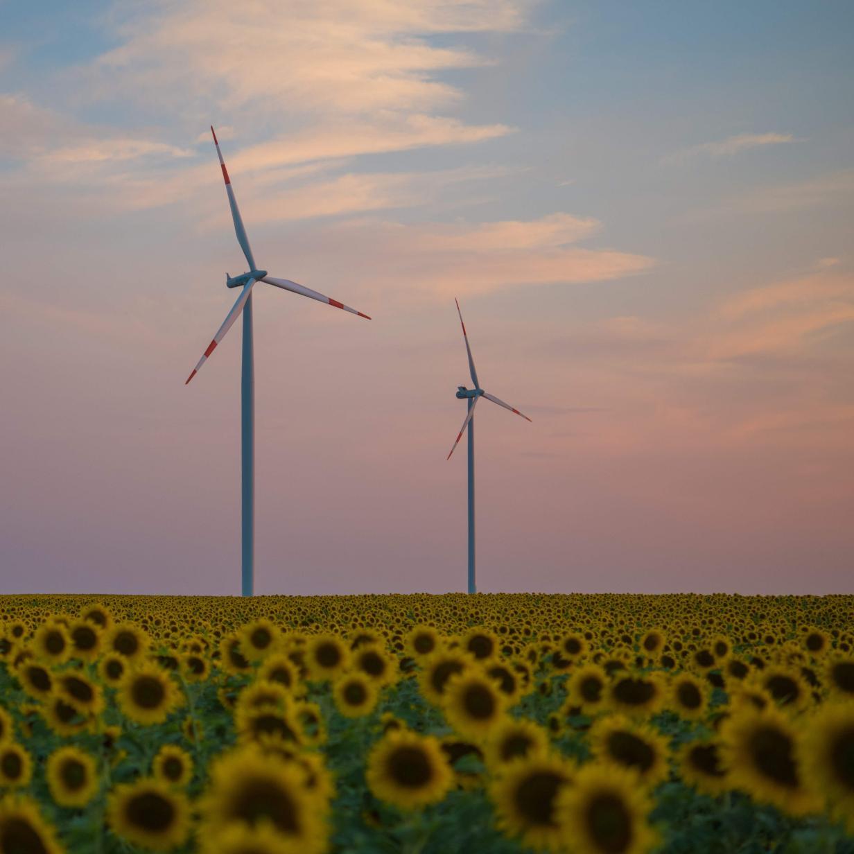 Europa hat Platz für elf Millionen Windräder