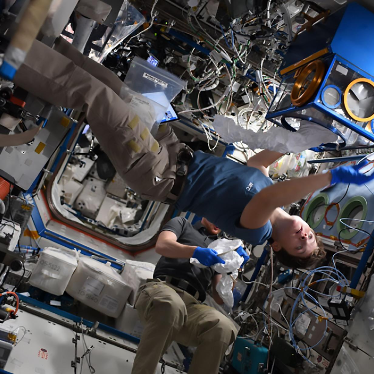 Auf ISS soll das erste Verbrechen im All stattgefunden haben