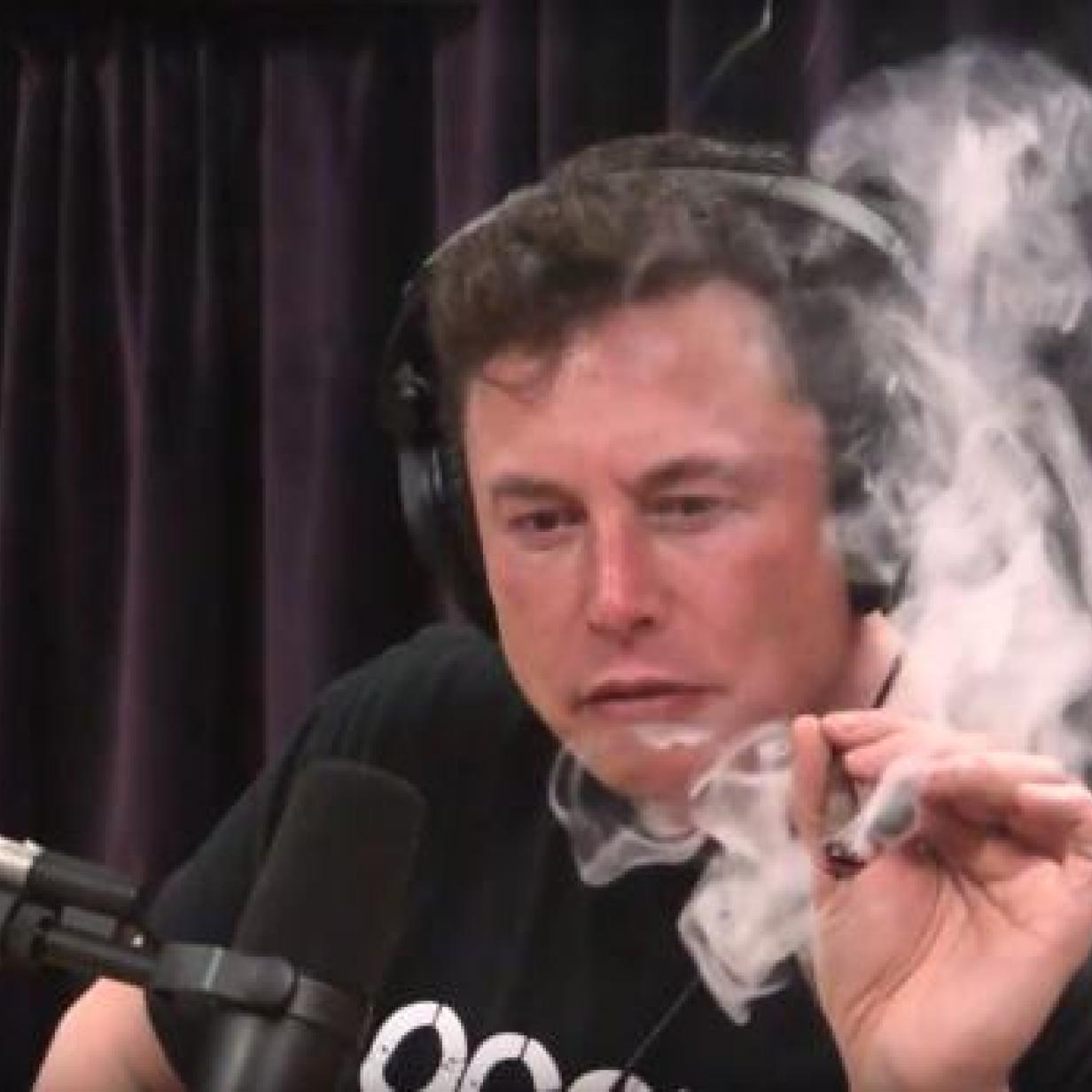 Kiffender Musk: NASA zahlte SpaceX Millionen für Drogen-Initiative