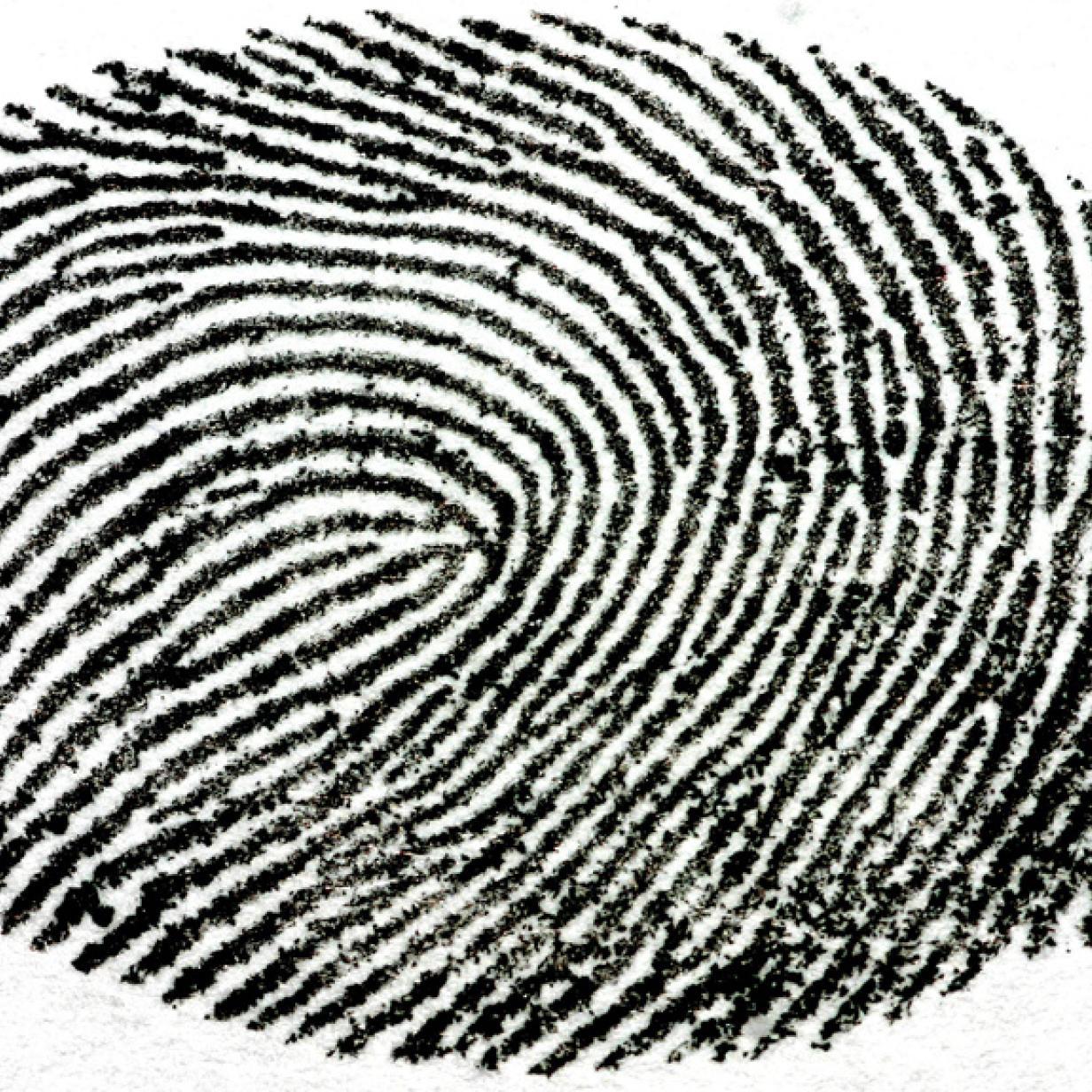 Galaxy S5: Fingerabdrucksensor bestätigt