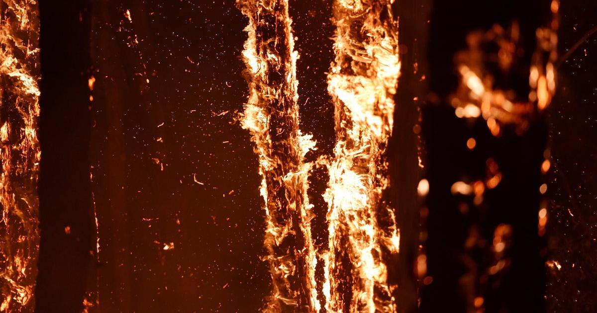 Buschbrand aus 3000 km Entfernung per Handy gelöscht