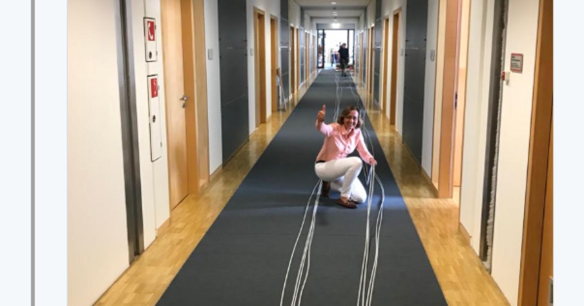 """""""Wireless-Kabel verlegt"""": Netz lacht über Tweet von AfD-Politikerin"""