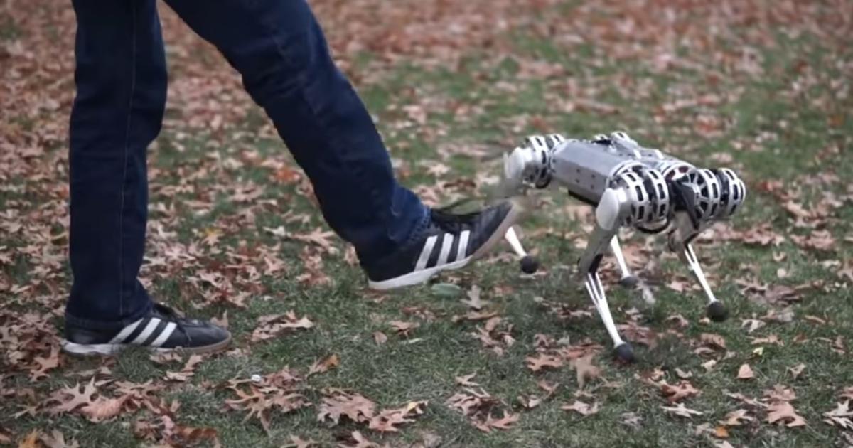Video: Roboter-Gepard zeigt den Rückwärtssalto