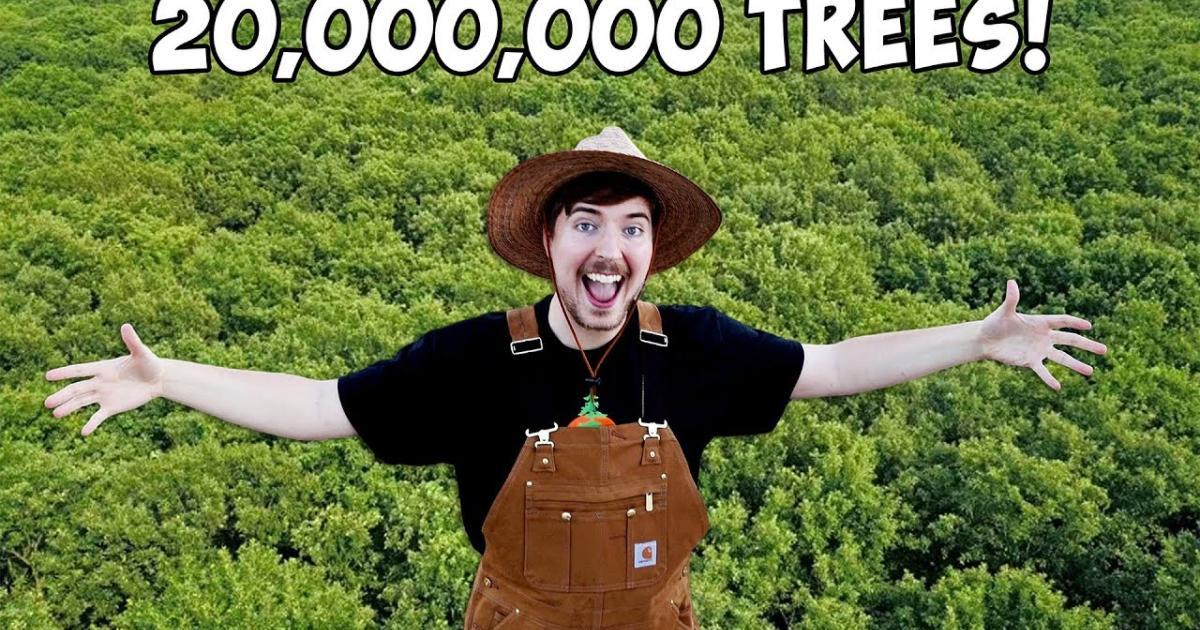 #TeamTrees: Spendenaufruf für 20 Millionen Bäume geht viral