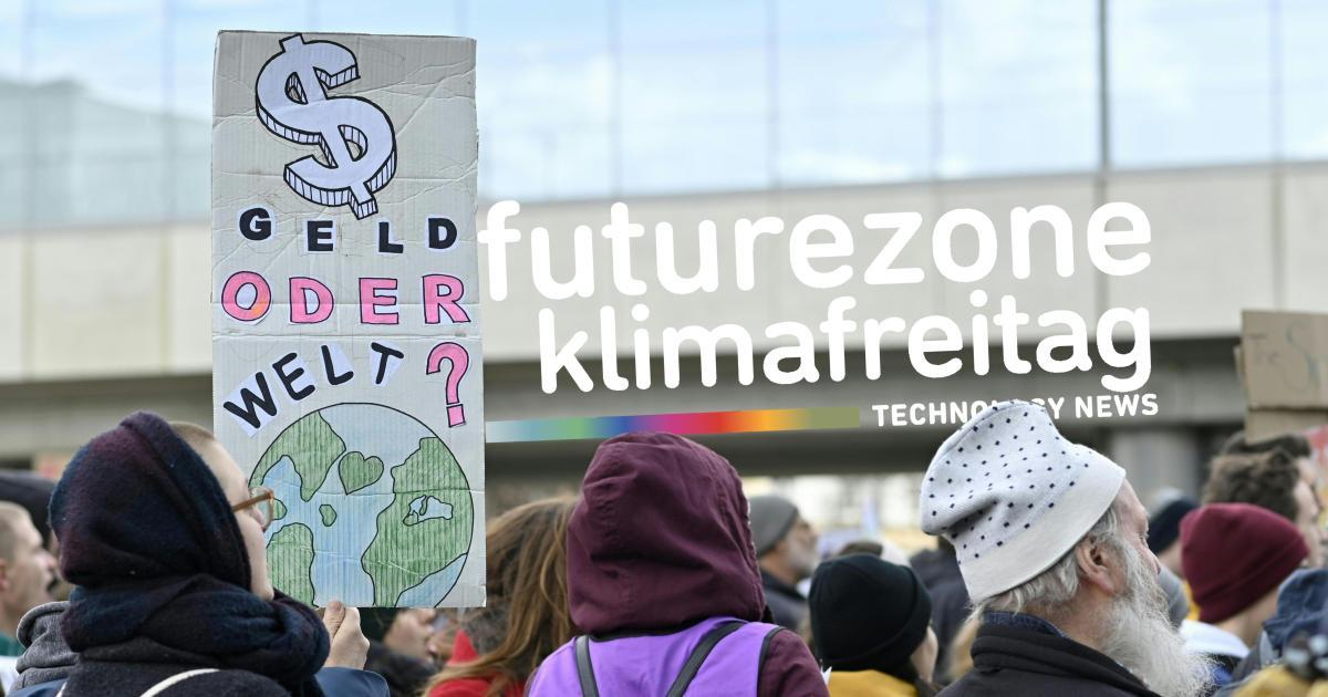 Fridays for Future: Wie der Klimastreik online weitergeht