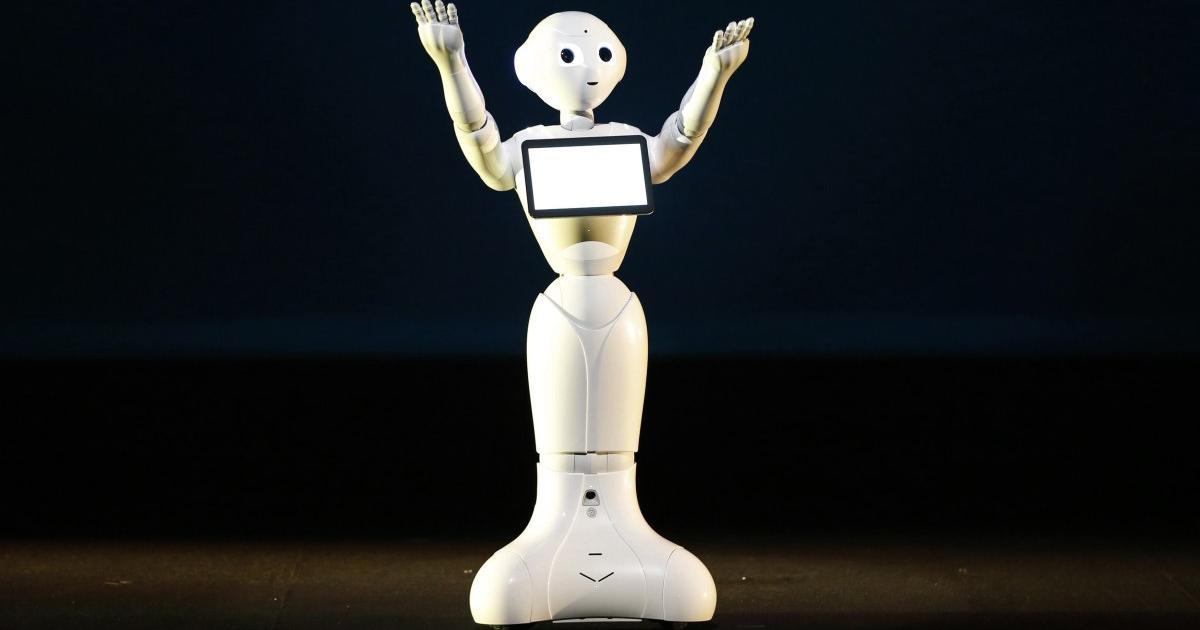 Roboterkäufer müssen zustimmen, keinen Sex damit zu haben
